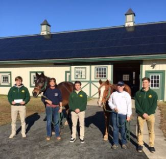 Military Careers Club Supports Horses for Heroes